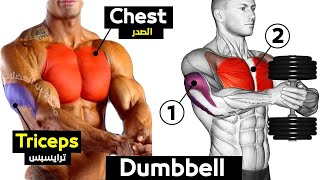 FULL EXERCISE DUMBBELL CHEST / TRICEPS workout
