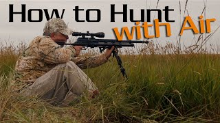 Watch and listen to air gun experts from American Airgunner TV to l...
