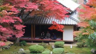 京極家墓所徳源院の四季 内容 冬の三重塔 20秒ころお初さんと高次さん...