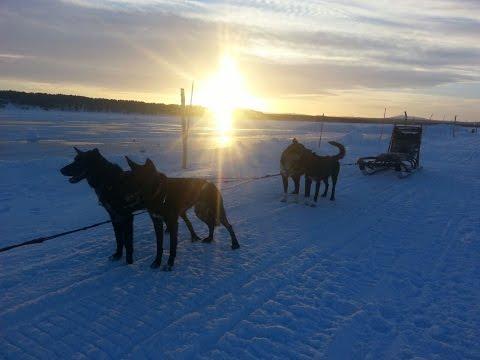Tracks & Trails - WINTER 2015 / 2016 - Aflevering 2- Swedish Lapland