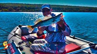 Рыбалка на спиннинг в конце лета Судаки в корягах