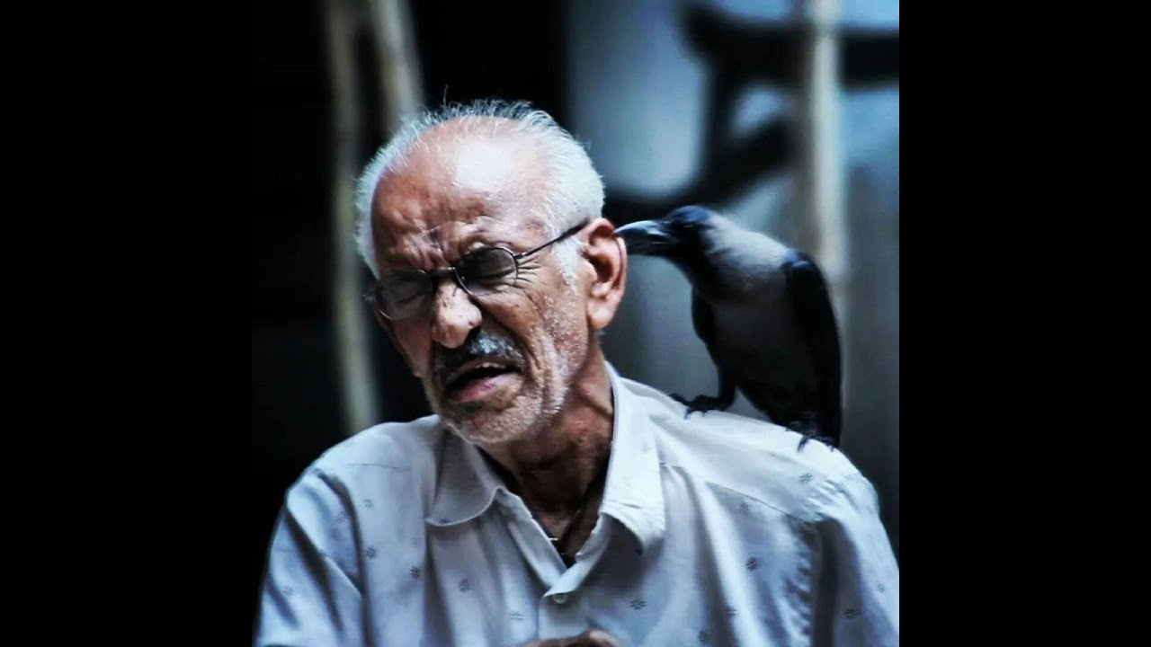 The Crowman   Short Film of the Day