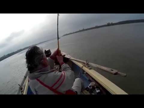 Ловля сома удилищем WFT Never Crack Big Fish