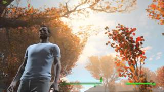 Fallout 4 - Athlon X2 5400 6GB DDR2 RAM GTX 750 Ti ULTRA 720p