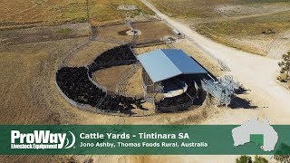 ProWay Cattle Yards - Thomas Foods Rural, Tintinara SA