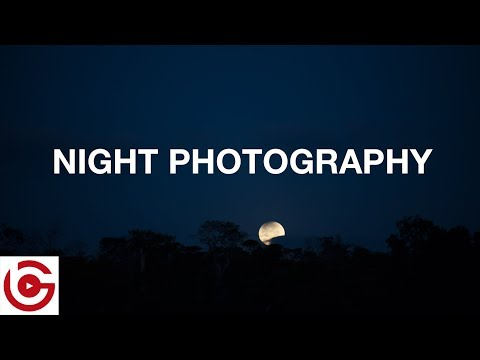 Camera Settings for Night Photography