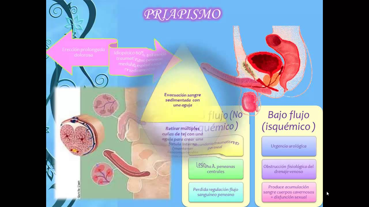 trastornos del pene