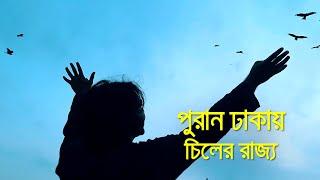 পুরান ঢাকায় চিল পাখির বন্ধুর বাড়িতে | bdnews24.com