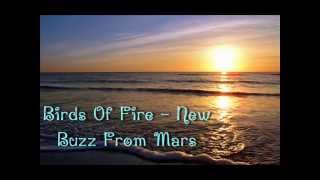 Birds Of Fire - New Buzz From Mars