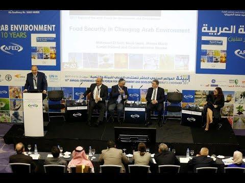 SESSION I - AFED Report Presentation - AFED Conference 2017