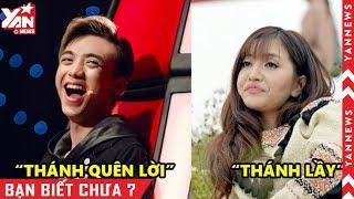 """Những ca sĩ Vpop được fan thi nhau phong """"thánh"""" của làng nhạc Việt"""