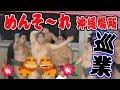 【冬巡業 - 沖縄場所】本場所では見られないお相撲さんの笑顔!甚句・初切・櫓太鼓などなど