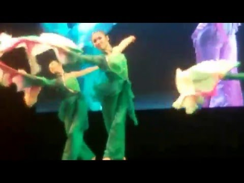 Tianjin Art Troupe from China with their mesmerizing performances...1