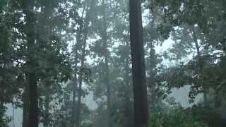 Man Does Rain Dance And The Heavens Open Thunder Lightning Heavy Rain