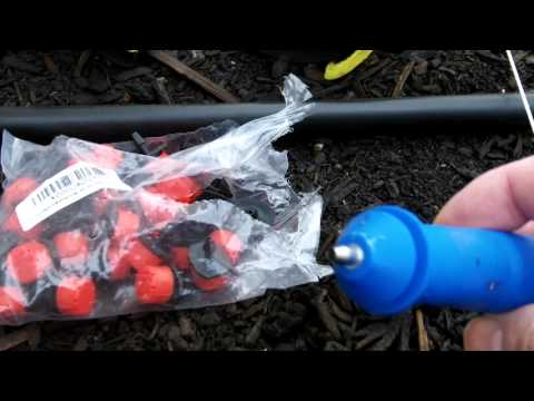 Around the Home: #35 Drip Irrigation Part 3 - The Drip Lines