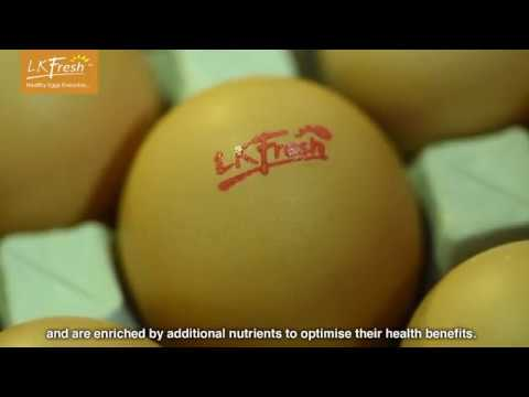 LKFresh Eggs Farm Operation and Intro