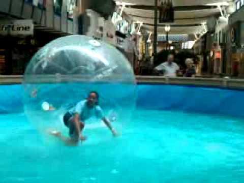 (2011) hamsterball full version free