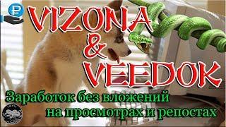 Vizona ru заработок на просмотре видео регистрация от 2500 руб в день