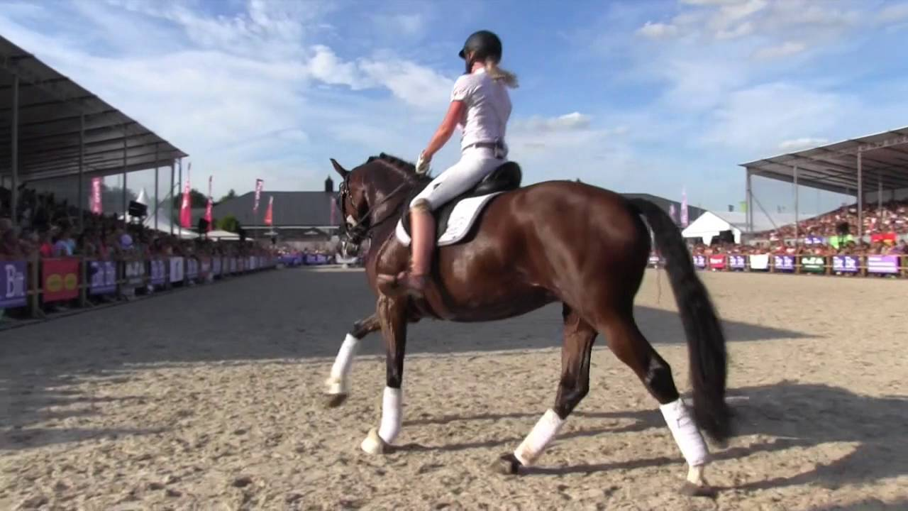 Bit Op Horse Event Britt Dekker Youtube