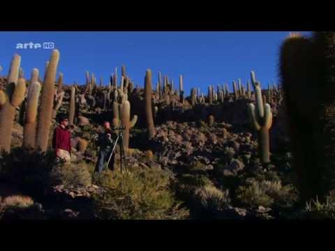(1.1) Voyages au bout du Monde - Bolivie, l'Altiplano