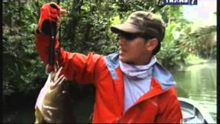 Mancing Mania (26 Jan 2014) - Sarang Spot Tail Bass