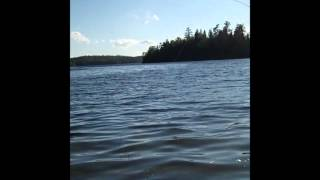 bwca wading for walleyes