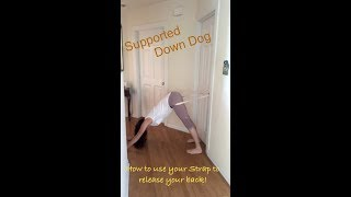 Release Your Back: How to Use Your Strap for Support Down Dog