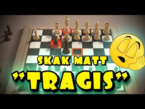 Trik catur pemula paling jitu Taktik catur pemula..