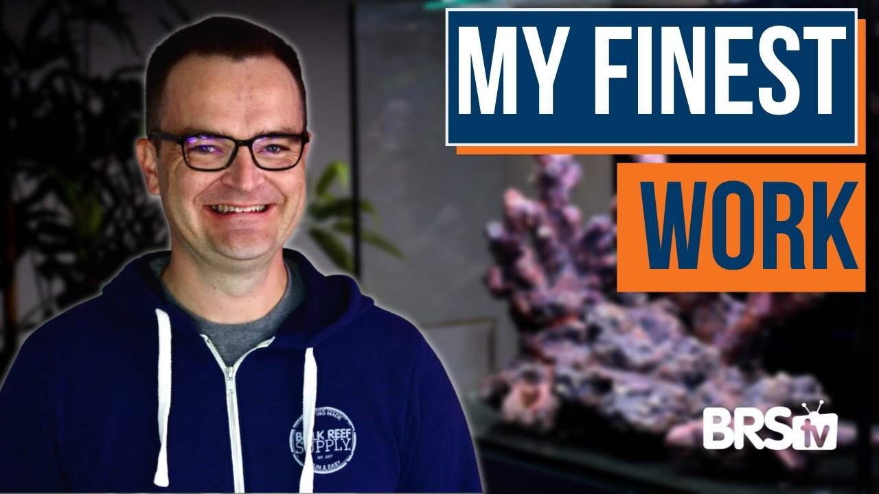 How To Aquascape Your Reef Tank | Ultimate Beginner Series part 13, From My First Fish Tank