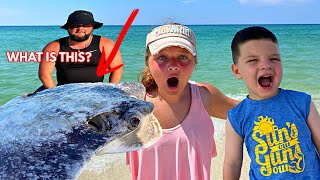 WE FOUND SOMETHING CREEPY IN THE OCEAN!!