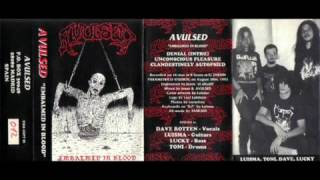 "AVULSED - 1992 ""Embalmed in blood"" (Demo I) Spain (Full)"