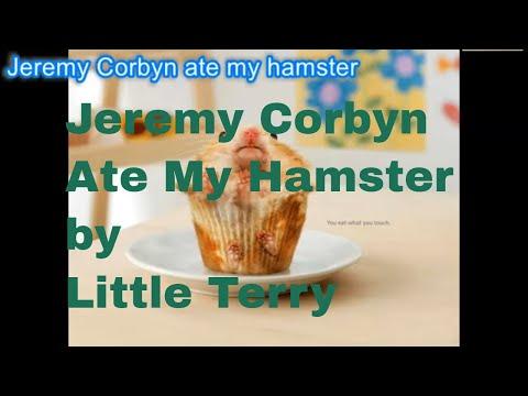 Jeremy Corbyn Ate My Hamster