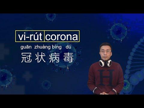 vi-rút corona / Cùng Kevin Học Tiếng Trung 200213