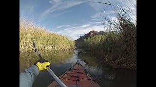 Kayaking backwaters of lower Colorado river