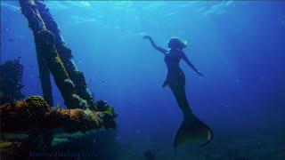 Mermaid Melissa Swimming in the Ocean at Shipwreck
