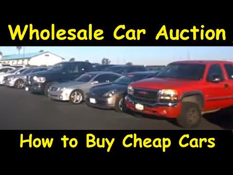 Car Dealer Auto Auction Bidding Wholesale Cars Video Part #1