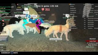 I SAW SHYFOOX ON ROBLOX IN GAME REAL!!