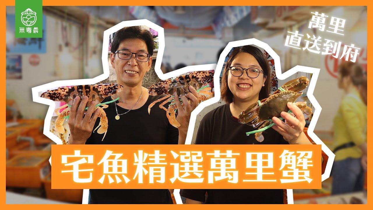 無毒農產地直擊|宅魚精選萬里蟹
