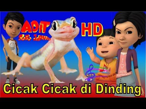 Adit Sopo Jarwo ✰ Cicak-Cicak di Dinding ✰ Lagu Anak Indonesia Populer