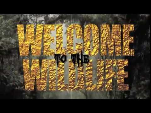 Wild Life Vlog 3