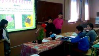 Будова рослин. Органи рослин. Урок біології  у 6-у класі.