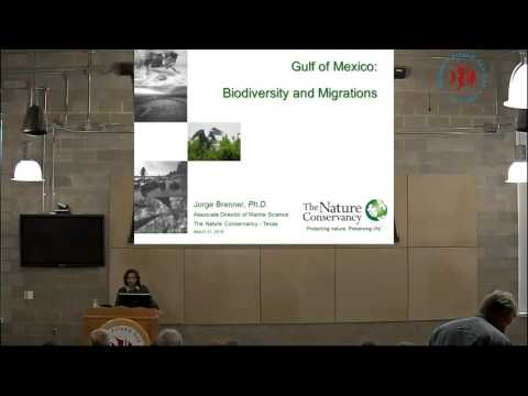 Dr. Jorge Brenner - Gulf of Mexico Biodiversity and Migrations
