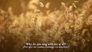 Damien Rice Delicate Subtitulada Español Inglés