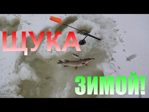 Cмотреть видео онлайн Ловля щуки на жерлицы зимой.