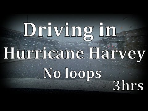 "3hrs  Driving in the Rain ""Hurricane Harvey"" ""No Loops"""