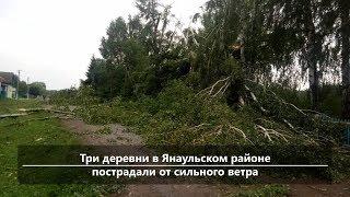 UTV.Новости севера Башкирии за 16 июля (Нефтекамск, Янаул, Дюртюли)
