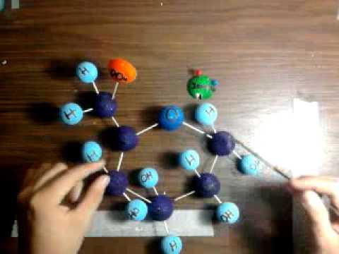 Explicacion de La Glucolisis 1.mp4 - YouTube