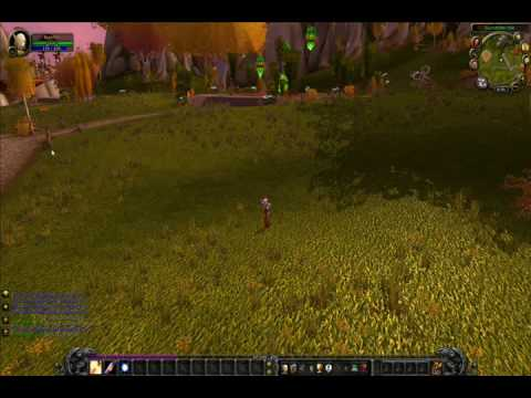 World Of Warcraft - Undetectable Leveling Bot - Priest