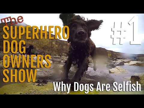Superhero Dog Owners Show: #1 - Why Are Dogs So Selfish?