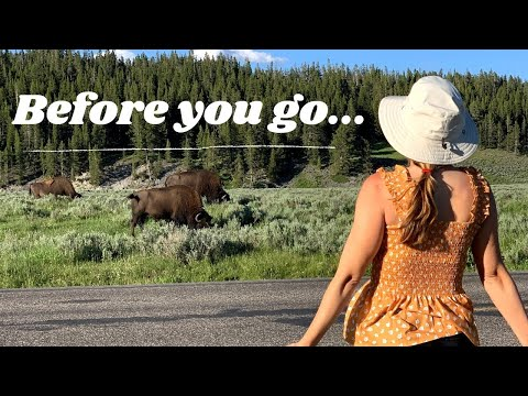WHAT NO ONE TELLS YOU ABOUT YELLOWSTONE NATIONAL PARK